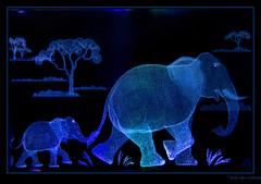 Elephant 3-4625-tlb (Arie van Tilborg) Tags: elephant color macro catchycolors colorful rainyday transparent opacity olifant chrystal kleur foolaround tilborg arievantilborg