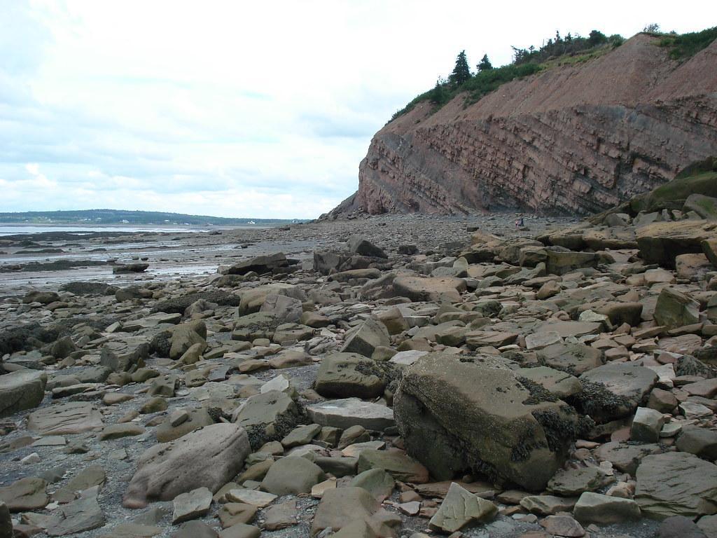 ジョギンズ化石断崖(Joggins Fos...