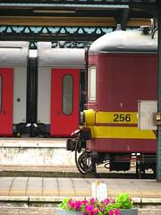 Gent-Sint-Pieters, Gent (Tetramesh) Tags: station belgium belgique belgie belgi railway trainstation ghent gent gand flanders belgien belgio blgica gwladbelg vlaanderen oostvlaanderen nmbs belgia blgica gentsintpieters eastflanders belga sncb belika belgicko beija belgija belgjik belju blxica anbheilg tetramesh b    geo:lon=3710669 ubelgiji