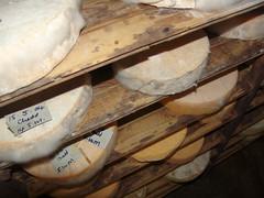 Vumba cheese