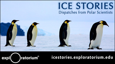 Exploratorium - Ice Stories: Dispatches from Polar Scientists