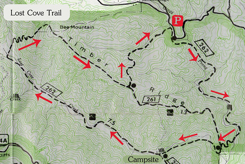 Lost Cove Trail Map
