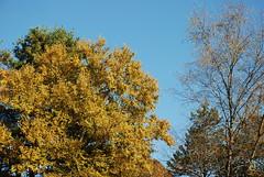 A lovely October day!