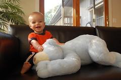 9 month bear 1