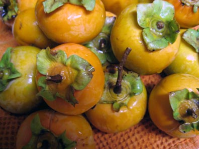 Persimmons from my parent's tree