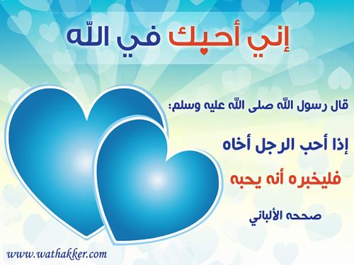 ������������������� ���� 2947891339_75854ca9b6.jpg