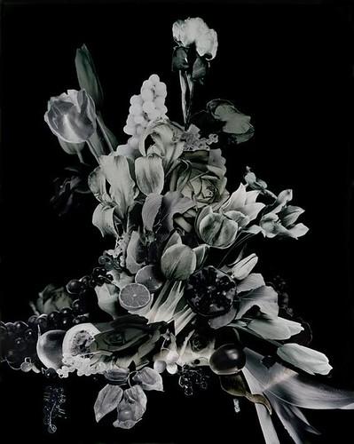 Bouquet III - Bouquet Serie