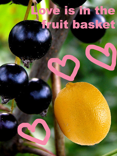 Love is in the fruit basket