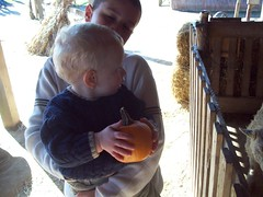 October 26, 2008 (tmlock29) Tags: dylan pumpkin ryan brayden