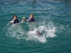 Swimming with the Dolphins (Susan M. Hill) Tags: dolphins excaret cancunmexico swimmingwiththedolphins dolphinexcursion