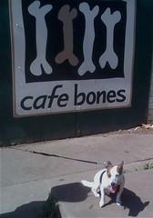 Cafe Bones, Leichhardt