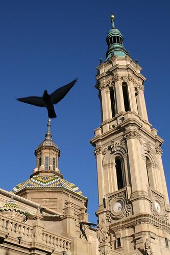 La paloma del Pilar