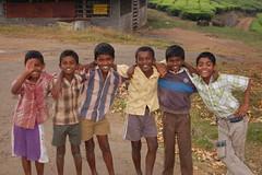 DSC_0552 (dark is light enough) Tags: india teaplantation stanmore valparai