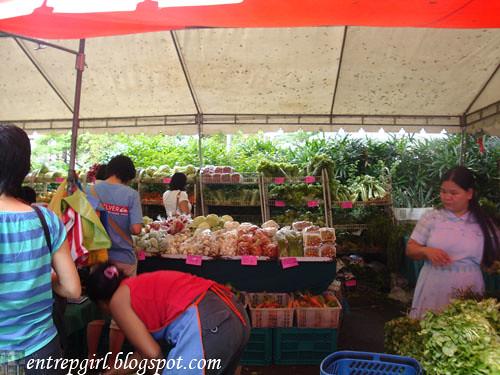 Salcedo produce