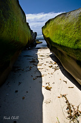 The Way to Paradise, La Jolla, CA (Nick Chill Photography) Tags: california beach photography sand nikon rocks paradise image sandiego stock perspective scenic peaceful lajolla explore tropical algae dslr inspiring crevace dx d90 nickchill