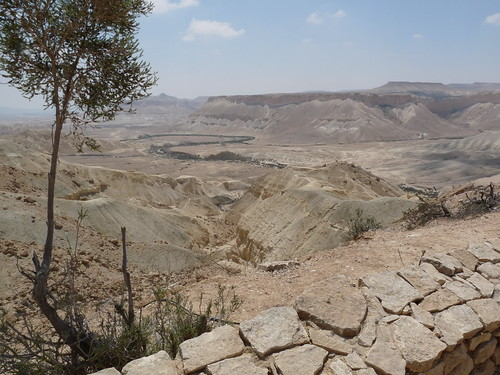 The Negev Desert Wilderness of Zin | Flickr - Photo Sharing!