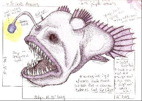 Angler Fish Concept Drawing