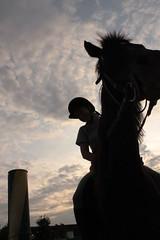 Sorella (____Sven) Tags: sky horse clouds nuvole sister pony cielo cavallo equus sorella equitazione caballus