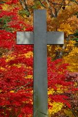 cross (lisaaaa33) Tags: cemetery cross sleepyhollow