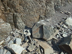 Rocks Joggins beach