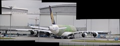 A380-841 MSN 0076 F-WWSC SQ (A380spotter) Tags: autostitch panorama composite airbus a380 toulouse sq 800 blagnac sia a12 tls flightline singaporeairlines lfbo jllagardere fwwsc aroconstellation 9vskp standa12 msn0076