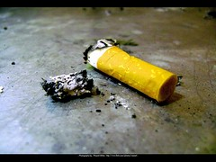 Cigarette (Waseef Akhtar) Tags: macro cigarette smoke sony 101 ashes parked aplusphoto ysplix sonydscs650