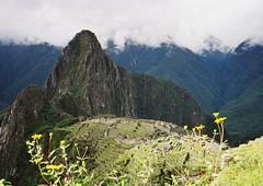 Machu Picchu under Huayna Picchu Peak, Peru