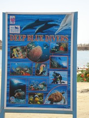 Deep blue divers advertising, hotel Panorama