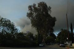 Universal Studios Fire-06/01/08