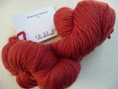 Malabrigo worsted - American Beauty - 8 skeins