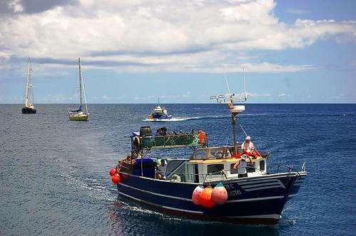 Embarcações de Pesca-Lajes-Flores Island-Azores