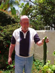 1 Big Japanese cucumber! (walknrun) Tags: vegetables garden japanesecucumber