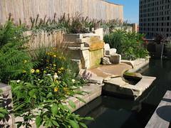 Rooftop garden - Hotel Metro