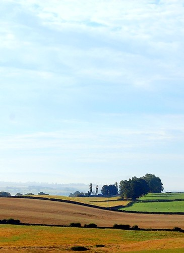 Tuscany or Eden Valley?