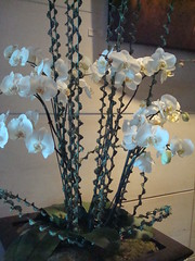Mandarin Oriental (conchang) Tags: nyc lounge lobby mandarinoriental
