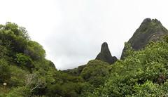 pan1 (angryf) Tags: hawaii maui jungle photomerge