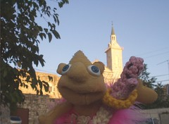 Pinky and friends in Jerusalem