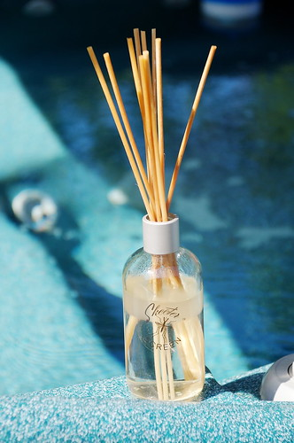 Skeeter Screen Reed Diffusers