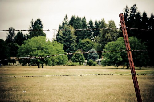 Wire fence in Stayton Oregon