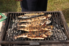 Trouts on the grill...