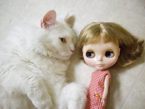 Nilla and Isobel meet.
