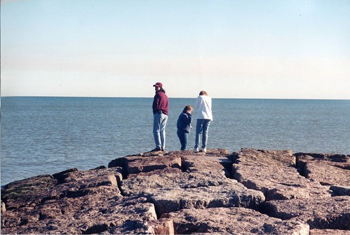 Groins on Sea Wall