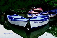 Botes/Boats (Altagracia Aristy) Tags: reflections boats botes amrica dominicanrepublic dominicana tropic caribbean reflejos antilles reflects caribe fishermanboat repblicadominicana miches trpico antillas elseibo quisqueya fujif40