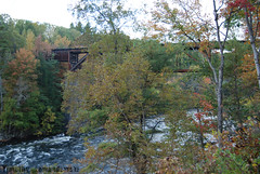 Rail Bridge (timmy yak) Tags: bridge water tress