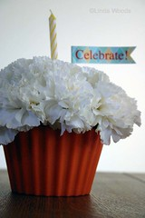 celebrating surprises! (lindawoods) Tags: flowers cupcake gift surprise celebrate carnations flowercupcake