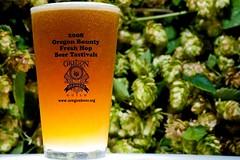 Fresh Hop Beer Tastival (Ben McLeod) Tags: beer oregon sb600 hops sb800 85mmf14d oregonbrewersguild strobist freshhops oregonbounty freshhopbeertastival