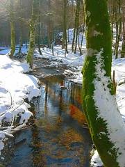 Urkiaga nieve rio (quintoreal) Tags: navarra eugi urkiaga quintoreal