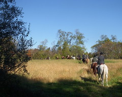 The field (Spoiledhorse) Tags: horses riding ridinglessons equestrian horsebackriding foxhunting foxhounds centralpennsylvania horsetrailers beauforthunt harvestviewstables juniorhunt