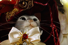 VF_08-10-30_0027 (Vincenzo_1949) Tags: marionette padova burattini