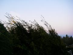 http://farm4.static.flickr.com/3019/3026893161_4bc0b60a07_m.jpg